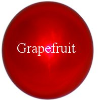Grapefruit Stainless Steel Gazing Globe