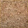 Buy Premium Quality Sunflower Hearts - Medium - Wild Bird Seed & Feed
