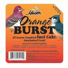 Animal Attractant: Suet Cake - Orange Blast - Wild Bird Seed & Feed