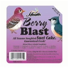 Animal Attractant: Suet Cake - Wild Berry - Wild Bird Seed & Feed
