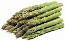 Bulk Non GMO Asparagus Seed - Jersey Knight  Asparagus Vegetable Seed