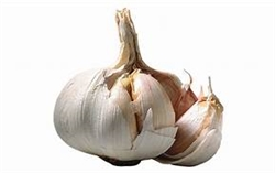 Bulk Non GMO Garlic Vegetable Seed