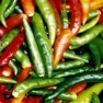 Buy Anaheim Chili Pepper Seeds - Bulk Hot Pepper Seeds | Mainstreet Seed & Supply