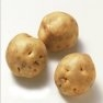 Bulk Irish Cobbler Potato Seed - Non GMO Vegetable Garden Seeds