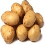 Bulk Kennebec Potato Seeds - Non GMO Vegetable Garden Seeds