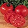 Bulk Non GMO Burpee Big Boy - Tomato Vegetable Garden Seed